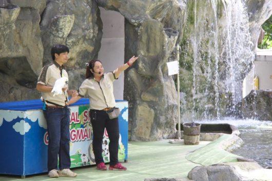 Chiangmai Zoo Animal Show, チェンマイ動物園アニマルショー
