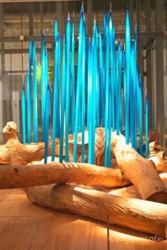 Toyama Glass Art Museum, 富山市ガラス美術館, トヤマ・リーズ, Toyama Reeds, Dale Chihuly, デイル・チフーリ