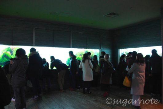 すみだ水族館, Sumida Aquarium, 自然水景, Natural Aquascape