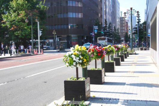 札幌市内, Sapporo City