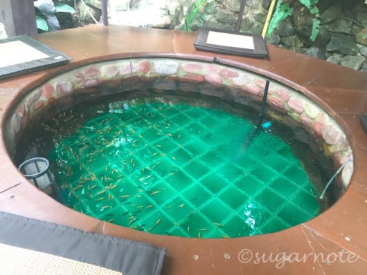 Cafe near Lampang, Fish Spa