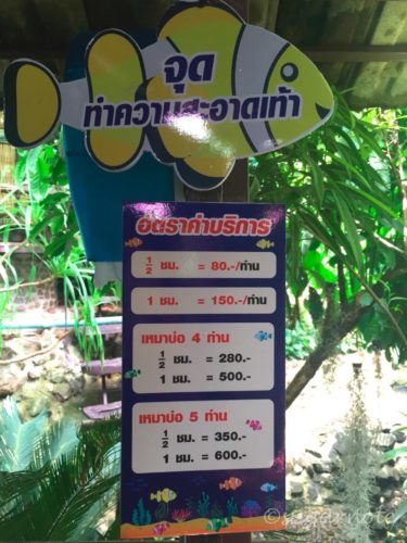 Cafe near Lampang, Fish Spa Price List