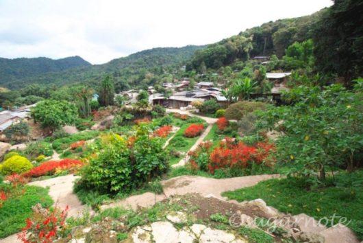ドイ・プイ村(Doi Pui Village)