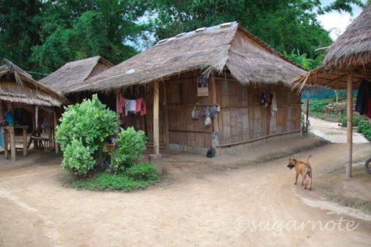 山岳民族のヤオ族とアカ族が暮らす村, Yao, Akha Hilltribe Village